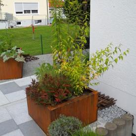 Pflegeleichter Terrassengarten Forum Ferrum