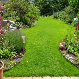Rasen in Ingolstadt im Garten